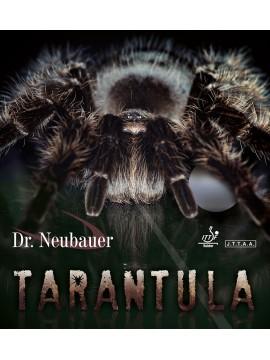 ยางปิงปอง Dr.Neubauer Tarantula ( ยางแอนตี้ )
